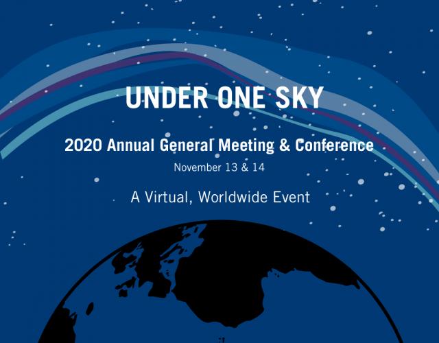 2020 IDA Global Conference